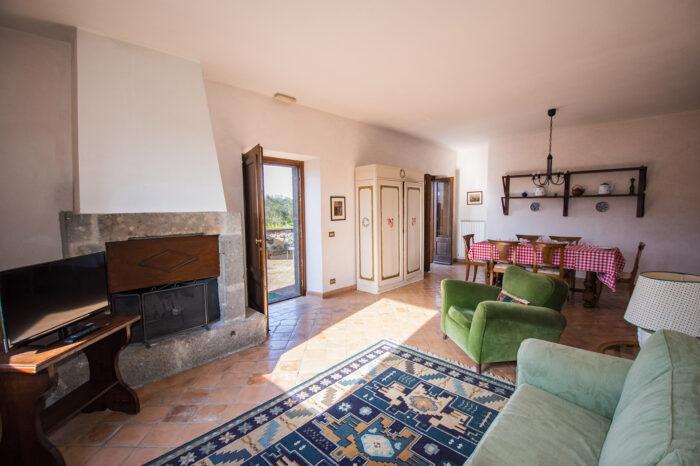 Salone dell'appartamento Peonia con splendido camino in pietra