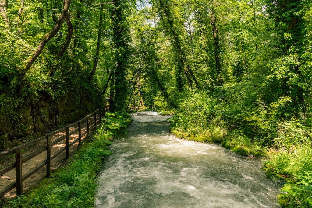 Un ruscello circondato da una splendida vegetazione in Umbria.